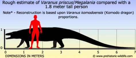 varanus-priscus-megalania-size