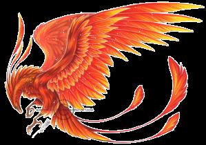 4207911-phoenix-pictures