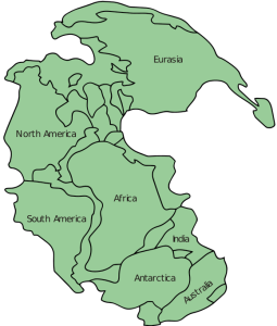 Pangaea_continents.svg