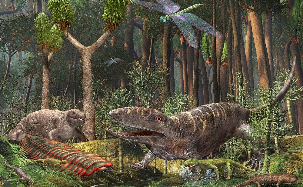 Carboniferous-Period