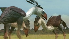 Picture Shows: Terror birds, giant, flightless, carnivorous prehistoric birds.